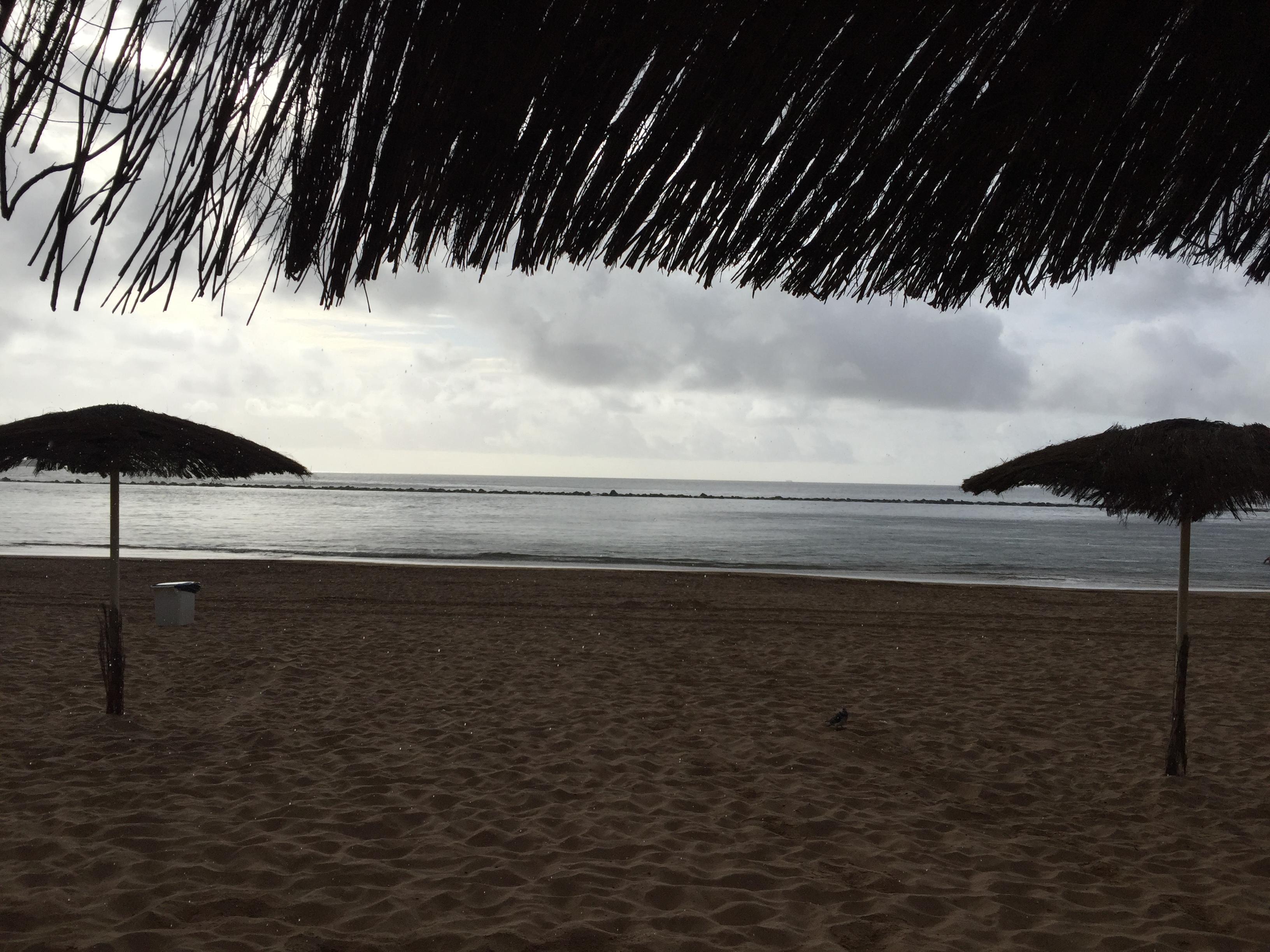 Moadiario Playa de las Teresitas Tenerife