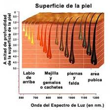 moadiario-superficie-de-piel-con-vello Depilación láser Vs IPL